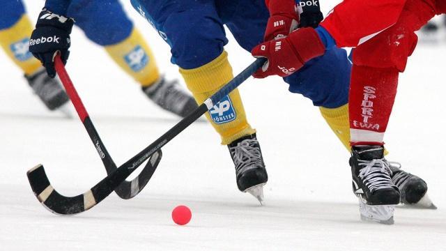 хоккей с ставку мячом сделать